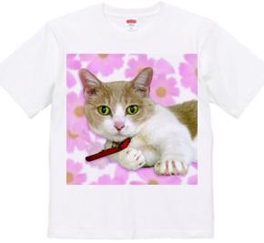 猫「カフェ+Let the cat」