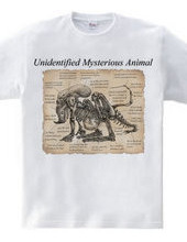 Unidentified Mysterious Animal