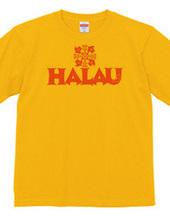ハワイ ホヌ