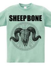 SHEEP BONE 2