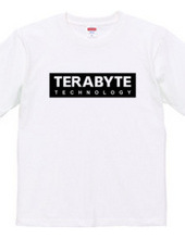 TERABYTE Technology