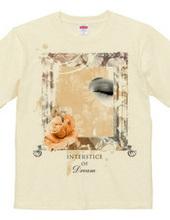 INTERSTICE OF DREAM