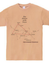 △夏の大三角形▽