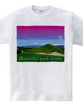 Beautiful park north color