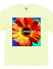 DEVELOPING COMPILATION VOL.2