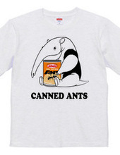 Anteaters and ants can