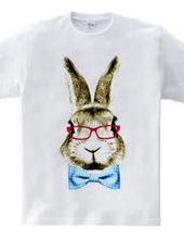 Rabbit in glasses