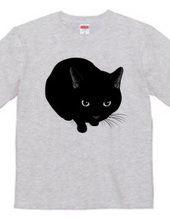 見つめる黒猫
