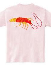 (Shrimp and fish) in a joyful sea illust