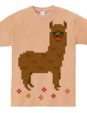 Dot Alpaca -brown-