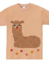 Dot Alpaca -light brown-