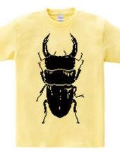 Stag beetle!