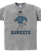 Iowa Hawkeye oldschool style College