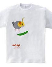 NORMAL COCKATIEL BIRD WITH GREEN PEAS