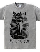 King Tut cat