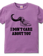 i don't care about you