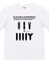 Planaria Experimant