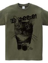 Camera Cat