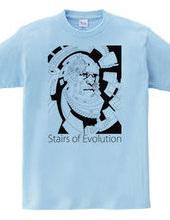 進化の階段