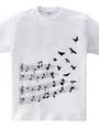 Birds×Sound