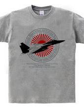 尖閣諸島を死守せよ!航空自衛隊