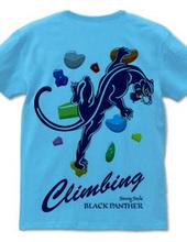 Climbing Black Panther