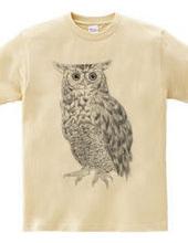 OWL 黒