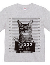 猫マグショット