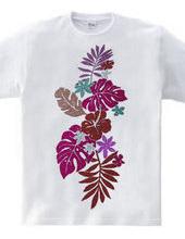 Hibiscus-p