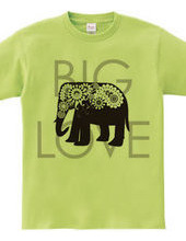 Paisley Elephant: Big Love