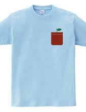 Apple Pocket