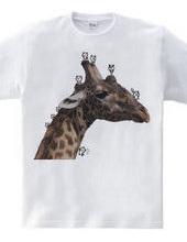 Giraffe and small animals