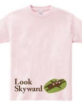 Look Skyward