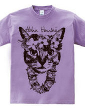 Aloha Cat