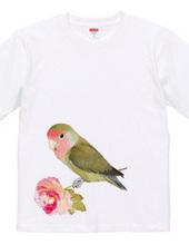 love bird - flower