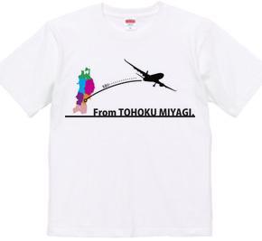 From TOHOKU MIYAGI