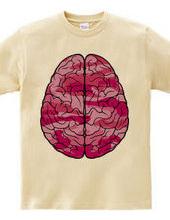Brain (pink)