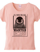 ANIMAL WANTED-A