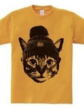 Knitcap cat