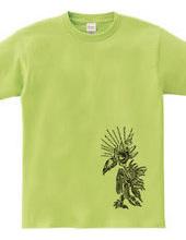 ツタエルトリ 古代鳥