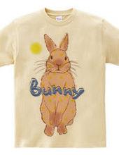 Bunny(moon)