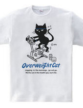 Fitness Bikes and cat
