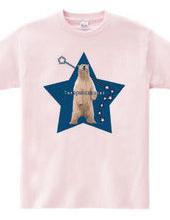 polarstar-bear C