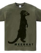 meerkat 01