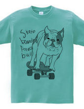 skateboarding french bulldog