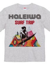 HALEIWA SURF TRIP