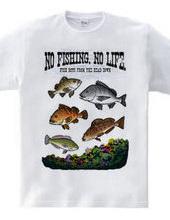 FISHING_S2_CF