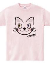 "Odd-eyed cat ""ODDIE"""