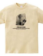 [Good luck prayer in Baghdad Kumamoto] s
