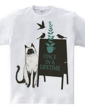Once in a lifetime 01
